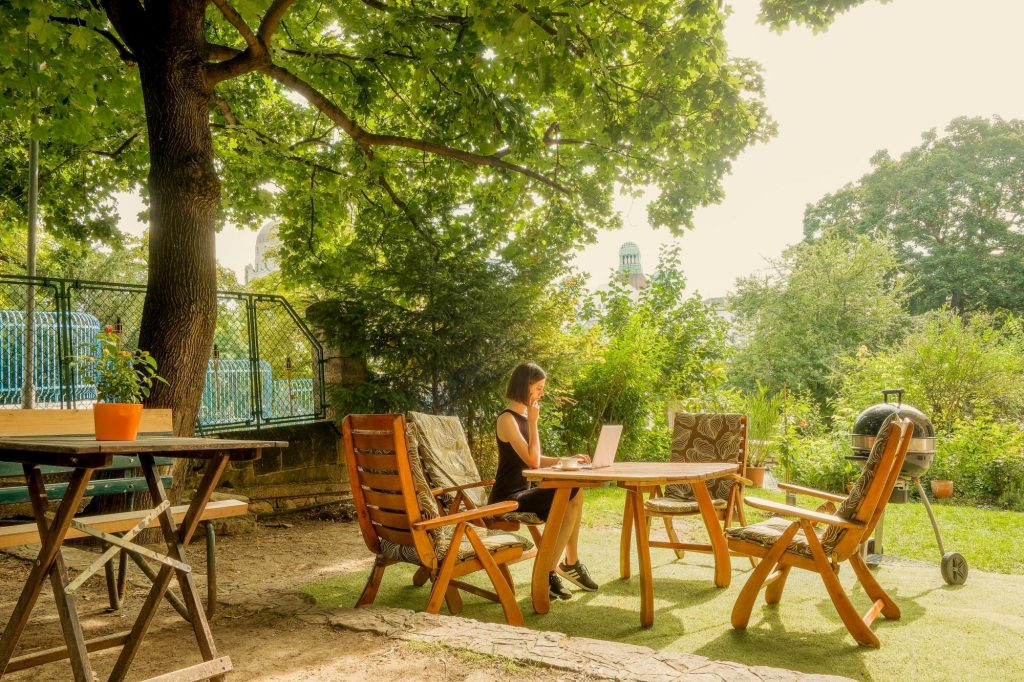 Baobab Coworking Oasis Budapest