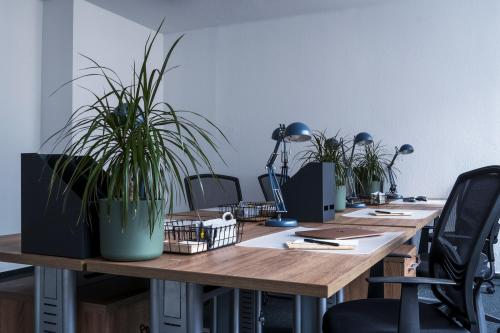 Office - New Work RM2 Business Center - Serviced Office - Budapest